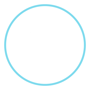 Detective Society Logo White and Blue